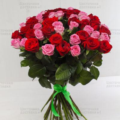 51 красно-розовая роза в СПб с доставкой