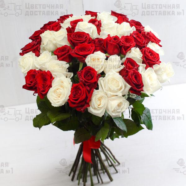 51 белая и розовая роза в СПб