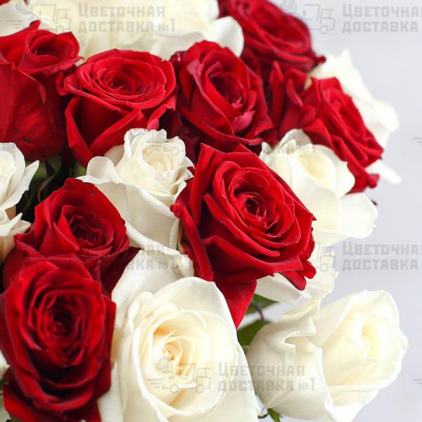 Красные и белые розы СПб
