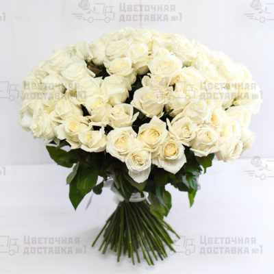 Купить 101 белую розу