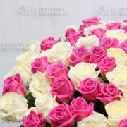 Белая и розовая роза
