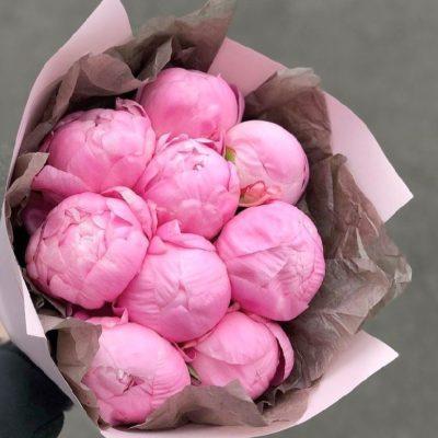 Розовые пионы Фестива
