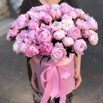 Розовые пионы в коробке недорого